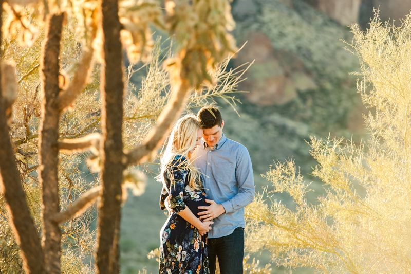 116 - Phoenix Maternity Photographer {Lauren & Cameron}