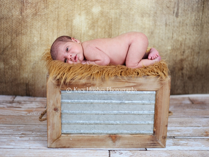 mw0013 705x529 - Newborn Photos